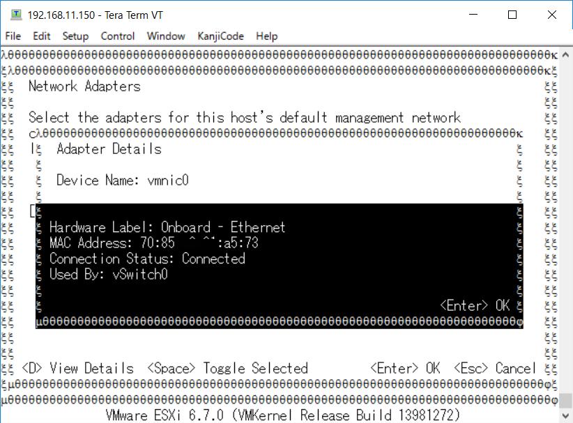 DCUI(コンソール)で見たMACアドレス